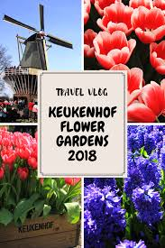 travel vlog keukenhof flower gardens 2018 netherlands