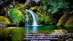 Tapeten: Wallpaper Hd Nature Quotes