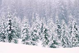 what are the elements of the plot in ethan frome the pen and the the landscape in ethan frome