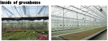 uv resistant greenhouse plastic sheeting. Interesting Resistant Antiuv PE Film Outside 01jpg Low Cost Agricultural Greenhouse Throughout Uv Resistant Greenhouse Plastic Sheeting U