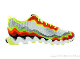 reebok shoes for men 2013. canada 2011,2010,2012,2014,2013,2015,2017,2016 reebok men\u0027s zigultra crush zigtech running shoes for men 2013 5