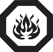 Image result for flammable symbol