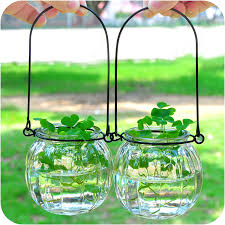 ai creative hanging clear glass vase pumpkin bottle simple flower hydroponic indoor gardening home furnishing decoration in vases from home garden on