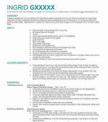 Life Insurance Resume Samples Resume Sample