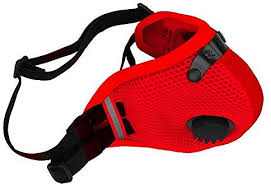 Rz Mask Md M2 5 Mesh Red