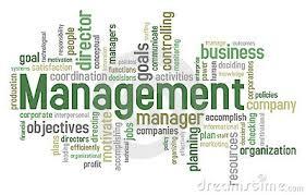 Risultati immagini per management
