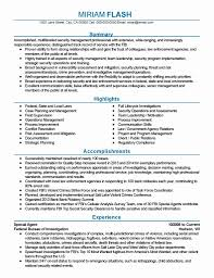 How To Write A Federal Government Resume 24 Awesome Federal Government Resume Template Resume Sample 20