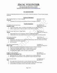 American Resume Format Inspirational American Resume Template