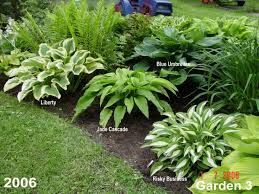 Small Picture 145 best Shade garden ideas images on Pinterest Shade plants