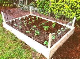 how to build a vegetable garden. Easy Vegetable Gardening Amusing Garden Ideas And Also Delightful Kitchen . How To Build A