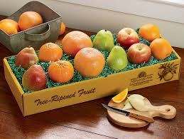 what are the best citrus fruit panies to order fruit gifts from citrus