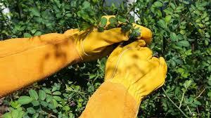 the best gardening gloves top 5 s