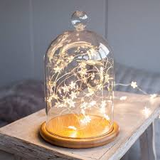 Cutting Micro Led String Lights Glass Bell Jar With Star Micro Fairy Lights Christmas