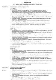Sample Director Of Finance Resume Director Finance Resume Samples Velvet Jobs