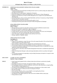 Operations Team Leader Resume Samples Velvet Jobs