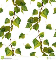 White Seamless Wallpaper With Green Leaves Of Birch Branches Stock