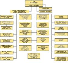 Taggs Fy 2006 Annual Report Organizational Chart