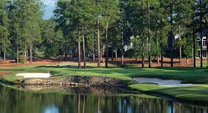 Image result for southern pines golf front homes