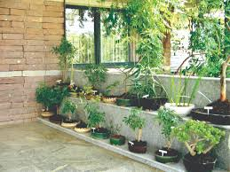 Simple Home Garden Design Small Vegetable Pictures And Ideas Urban Backyard  Unique Gardens About Remodel With