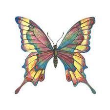 Motýl Pestrobarevný