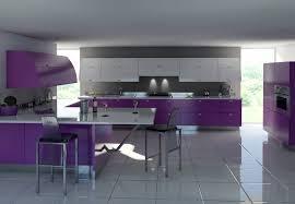 ... Trend Modern Purple Kitchen Purple Kitchens ...