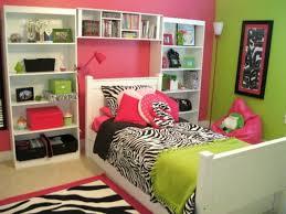 Pink Zebra Bedroom Ideas