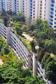 green roof rooftop garden