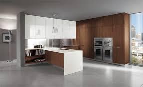 Attractive Ultra Modern Kitchen Design Idea Home Brown And White Italian