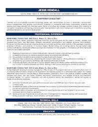 Consultant Resume Examples