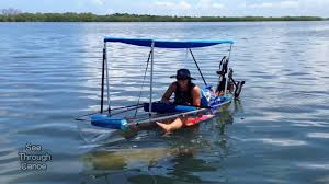 Transparent Canoe Kayak Manatee Making Strange Faces Under A Clear Canoe Scratching Its