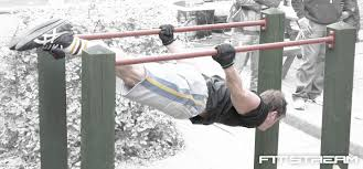 parallel bars are another great addition to your outdoor weight gym that you can build yourself