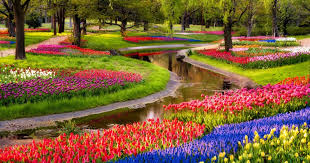 flower gardens pictures. 20 Of The Most Beautiful Nature Made And Man Flower Gardens In World ( Pictures