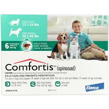 what is comfortis. Unique What Inside What Is Comfortis O