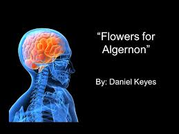 "flowers for algernon"" by daniel keyes about the author daniel  1 ""flowers for algernon"""