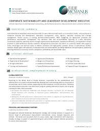 Resume Examples For Executives Resume Skills Examples Executive ...