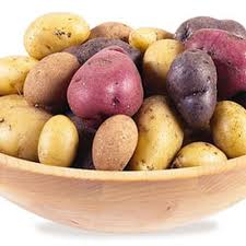 Dem System Fat Vs Skinny Foods Chart All About Potato Varieties Choosing Potatoes Gardeners
