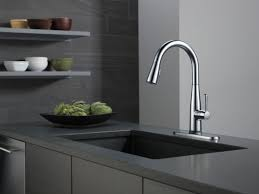 Touch Kitchen Sink Faucet Faucetcom 9113t Dst In Chrome By Delta