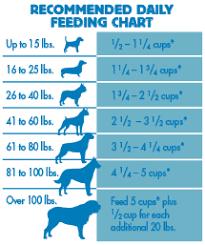 Blue Freedom Dry Dog Food Grain Free Chicken Recipe Blue