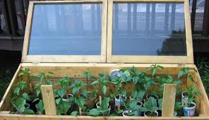 cold frame garden. Exellent Frame Add Four Weeks To The Front Of Growing Season By Using Cold Frames  Start Your Garden With Cold Frame Garden