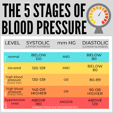 Blood Pressure Faqs The Heart Foundation
