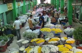 Image result for pasar bunga rawa belong