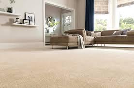 Living Room Carpets Rugs Carpets For Living Room Good Room Best Carpet Wayfair Rugs 8406