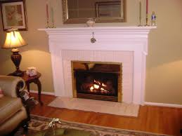 gas fireplace napoleon electric fireplace inserts