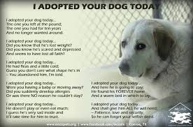 Rescue Dog Quotes Awesome I Adopted Your Dog Today Rally To Rescue