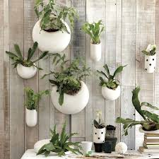 outdoor wall planters shane powers ceramic wall planters west elm wall mounted planters outdoor uk