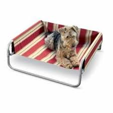such a cute outdoor bed but not practical for an inside dog dog