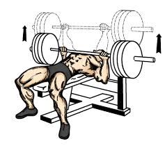 Smith Machine Wide Grip Decline Bench Press  Exercise Database Decline Barbell Bench