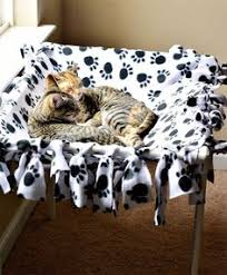 Spoil Your Kitty 27 Creative And Cozy Cat Beds