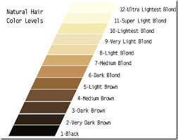 Best Red Hair What Volume Developer To Use With Wella Hair