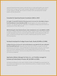 Best Font Resume Simple Great Resume Examples 48 Fresh Best Sales Resume Examples 48
